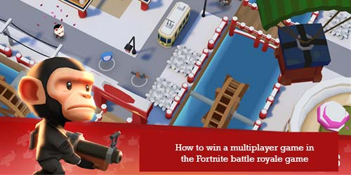 the Fortnite battle royale game